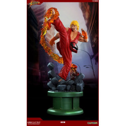 Street Fighter IV Estatua...